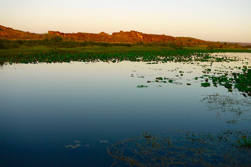 Sonnenuntergang an einem Billabong - Arnhem Land - Northern Territory
