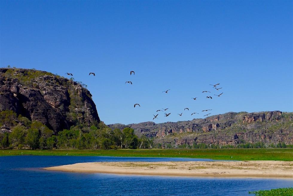 Wunderschöner Billabong im Mikinj Valley - Arnhem Land - Northern Territory