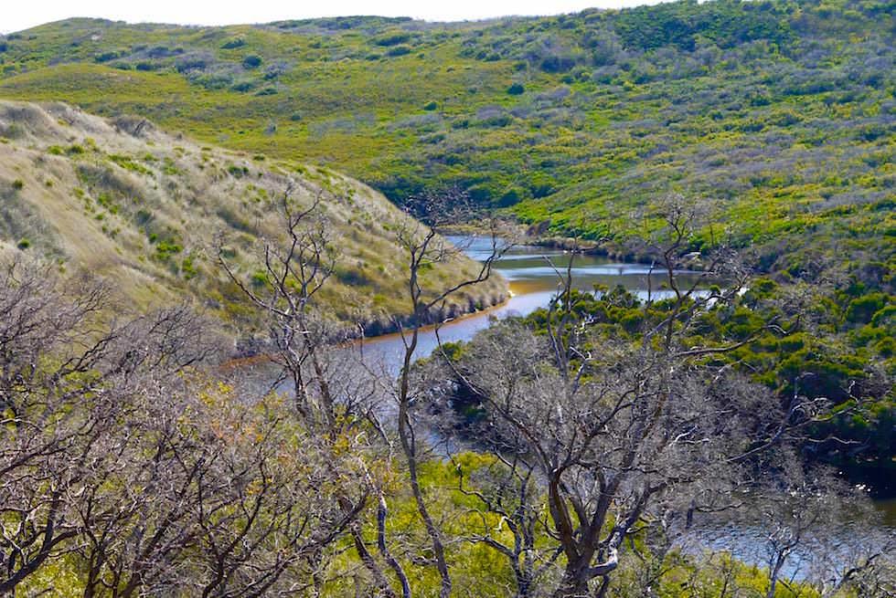 Blick Flussabwärts von den Felsen am Margaret River - Western Australia