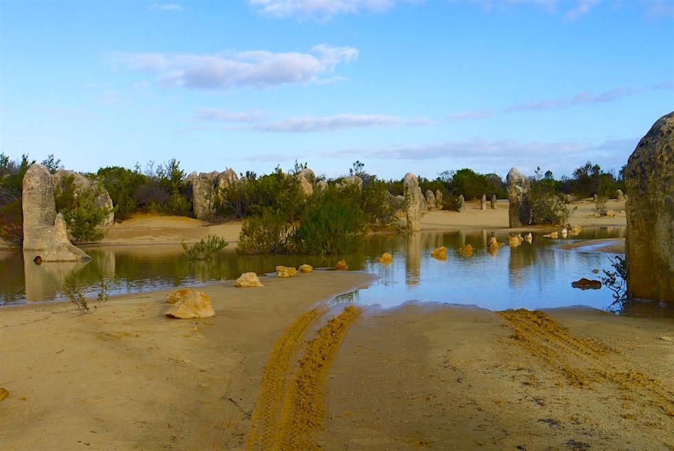 Regen - Pinnacles Desert - Western Australia