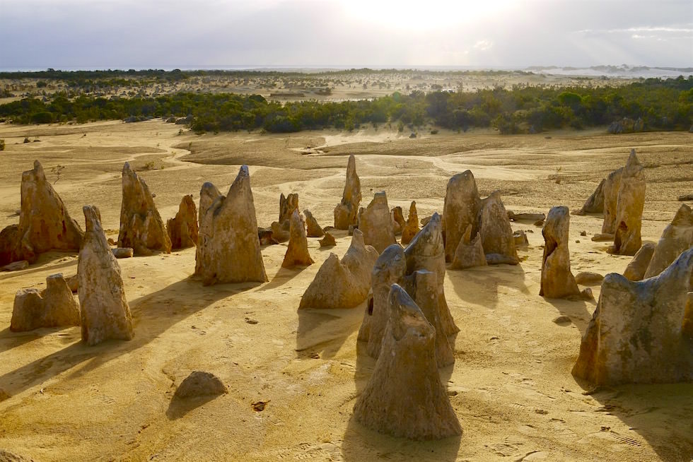 Hinterer Teil - Pinnacles Desert im Nambung National Park - Western Australia