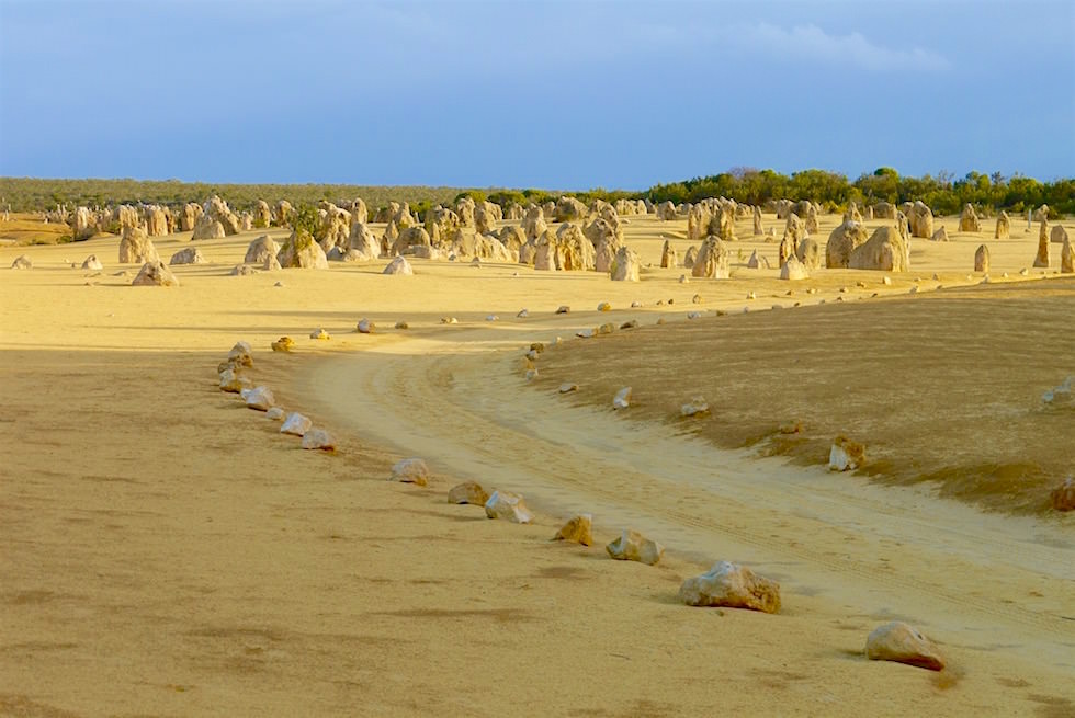 Spaziergang durch die Pinnacles - Nambung National Park - Western Australia
