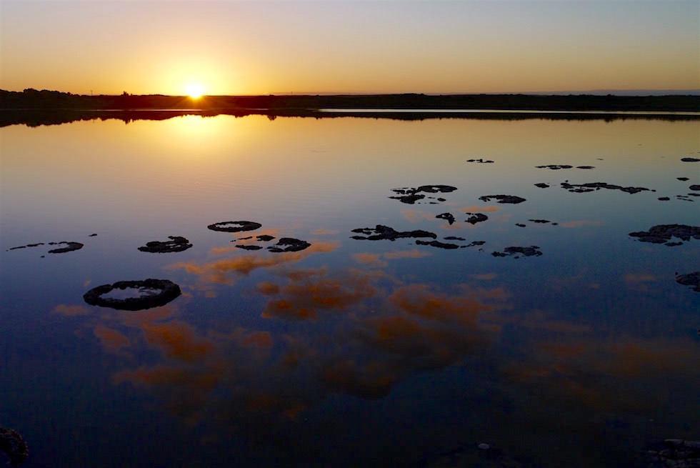 Lake Thetis & Stromatolites bei Sonnenuntergang - Cervantes - Western Australia