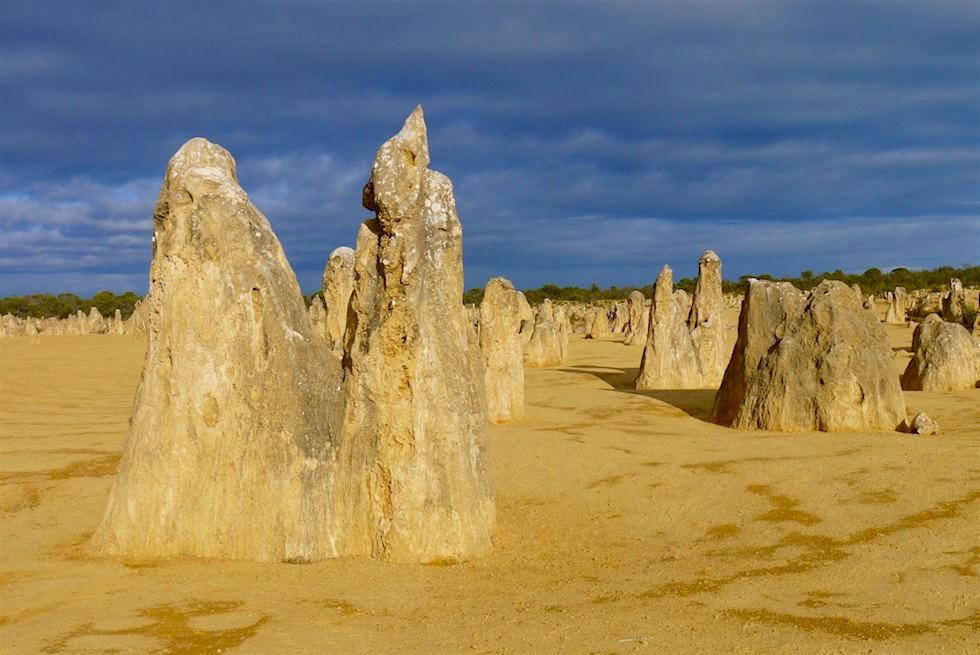 Versteinertes Heer - Surreale Felsskulptur - Nambung National Park - Western Australia