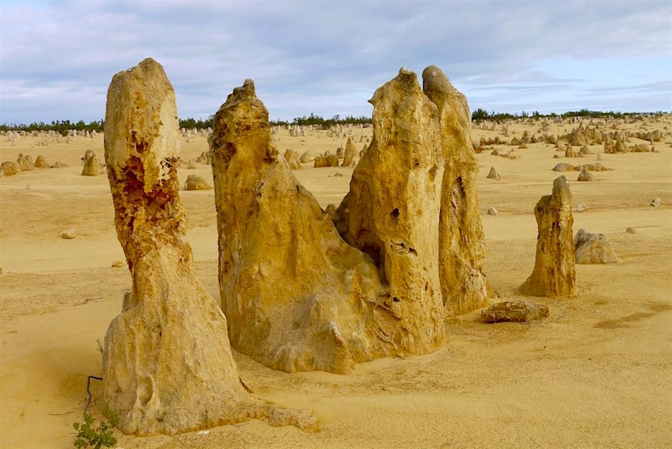 Hohe Felsnadeln - Nambung National Park - Western Australia