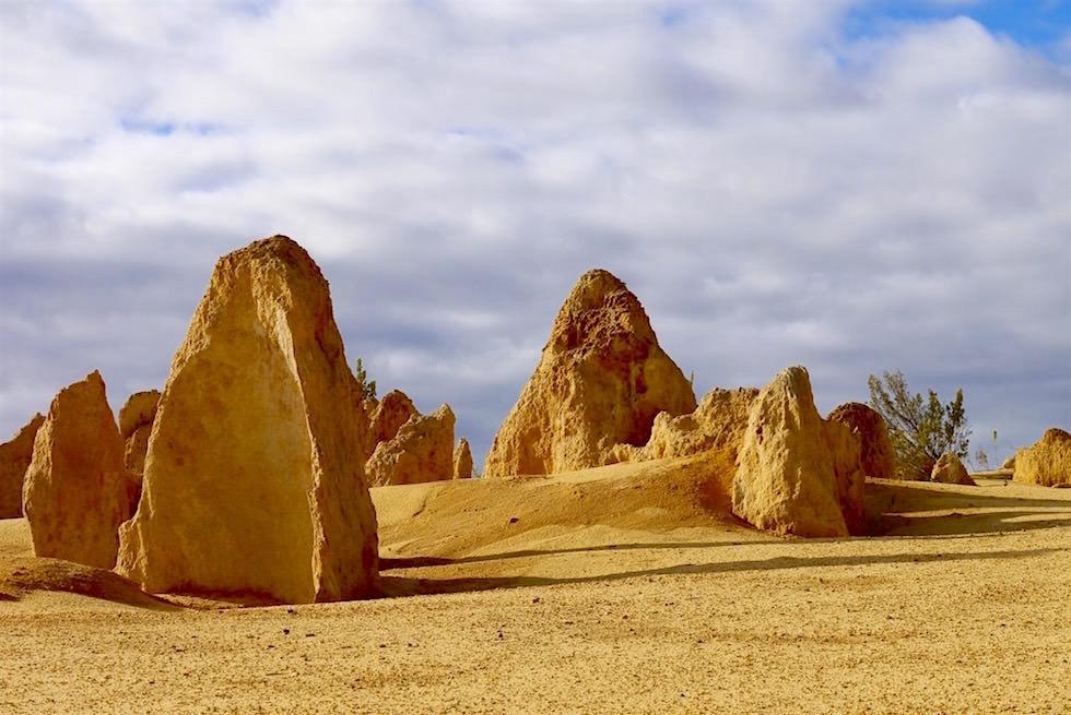 Versteinerter Wald Theorie - Nambung National Park - Western Australia