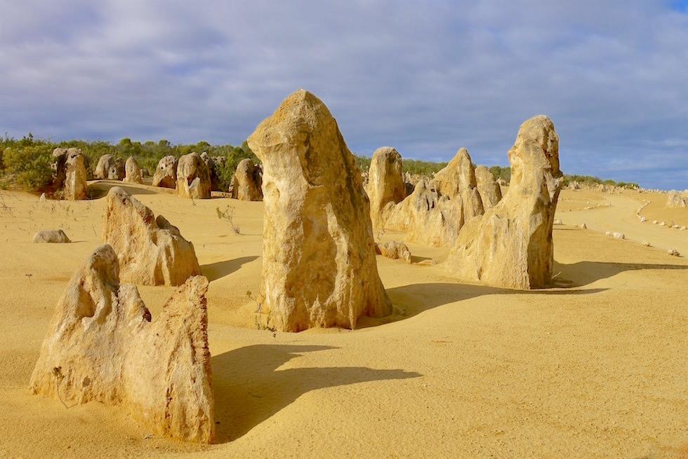 Nambung National Park - Felssäulen - Western Australia