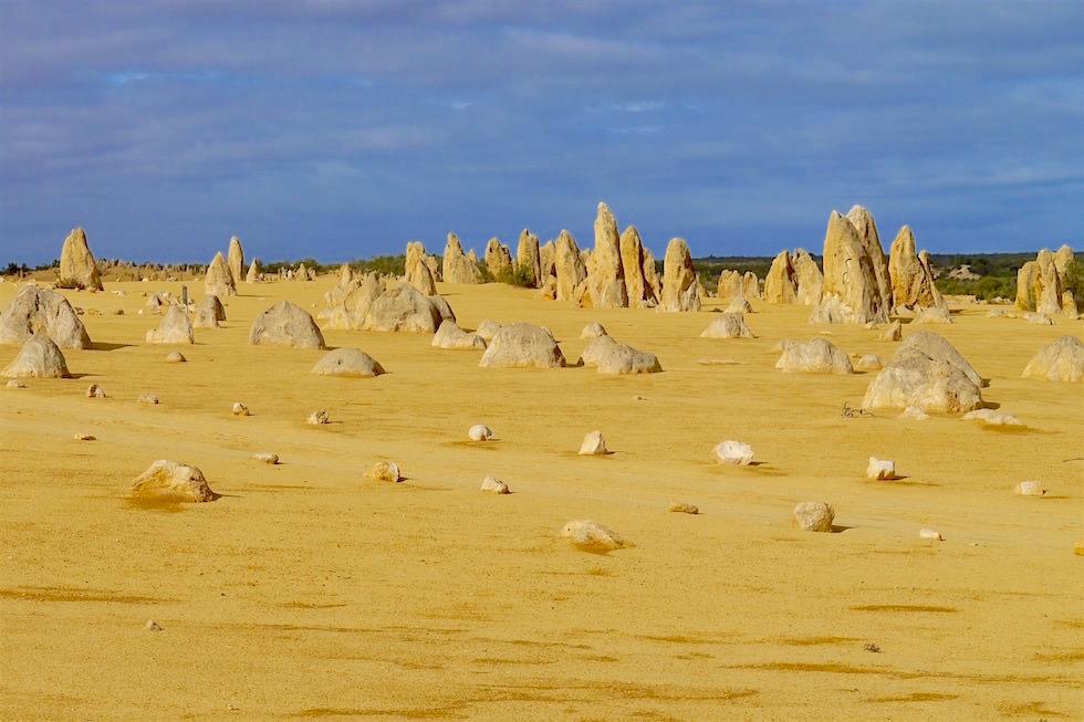 Felssäulen & Piste - Nambung National Park - Western Australia