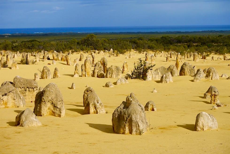 Blick vom Lookout - Pinnacles Desert - Western Australia