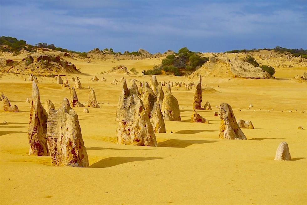 Große, kleine Felsnadeln - Pinnacles Desert im Nambung National Park - Western Australia