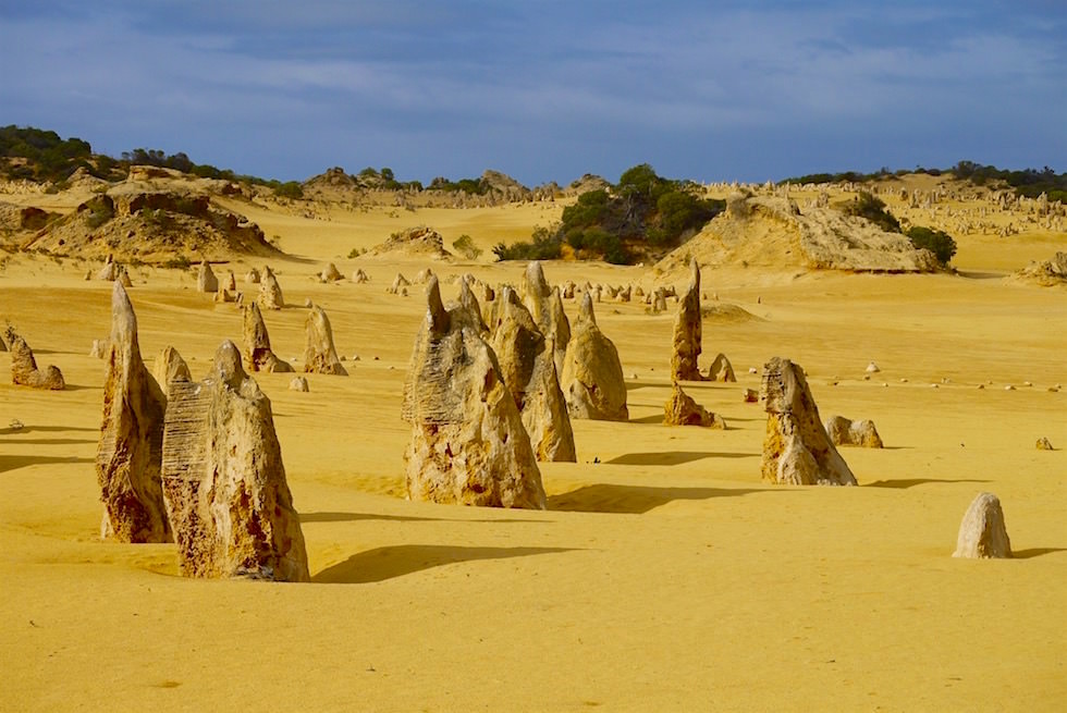Pinnacles & Felsspitzen - Nambung National Park - Western Australia