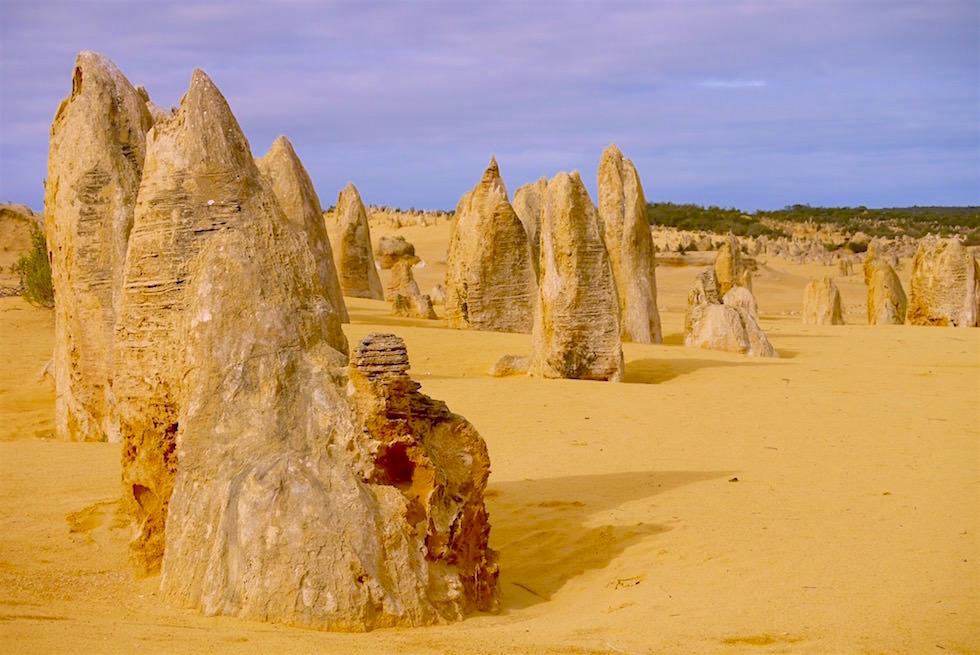 Stalagmiten Sandwüste - Nambung National Parks - Western Australia