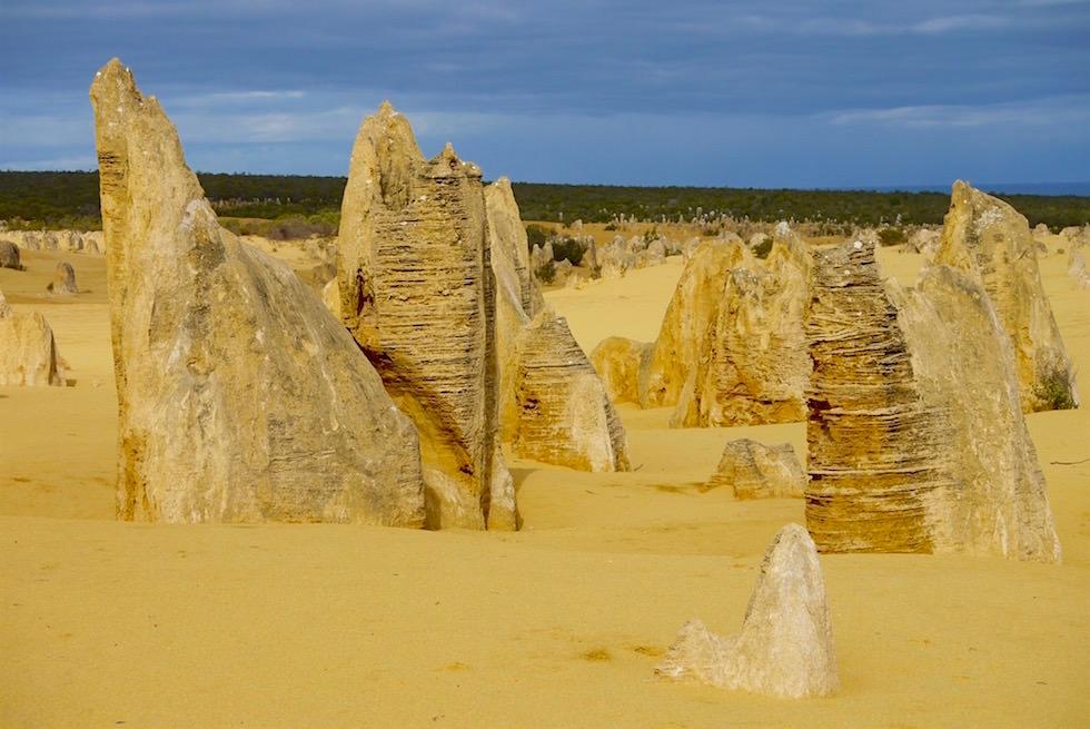 Entstehung Felsnadeln im Pinnacles Desert - Nambung National Park - Western Australia