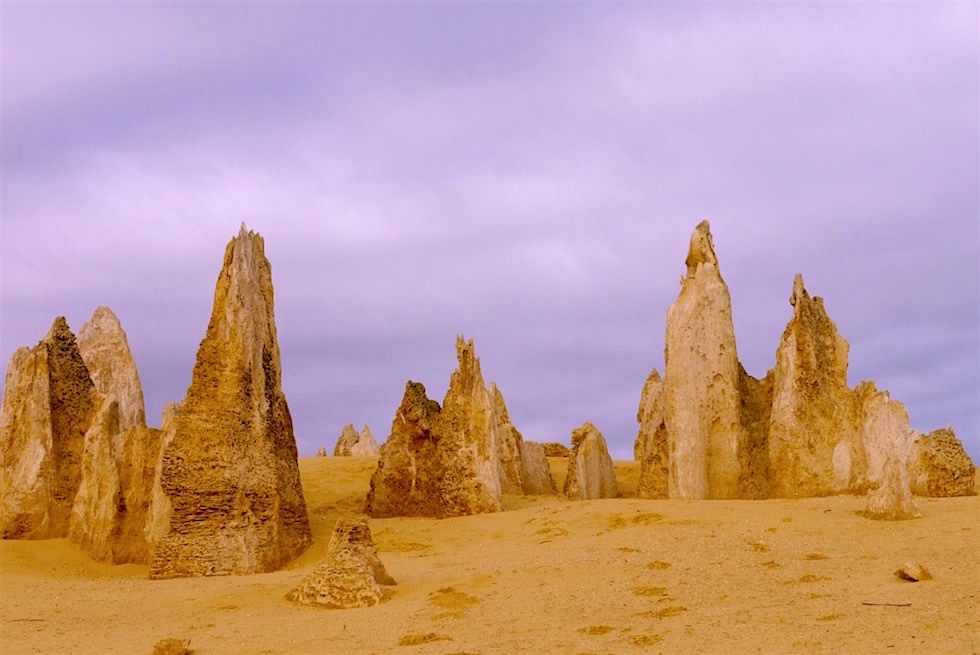 Entstehung Pinnacles - Nambung National Park - Western Australia
