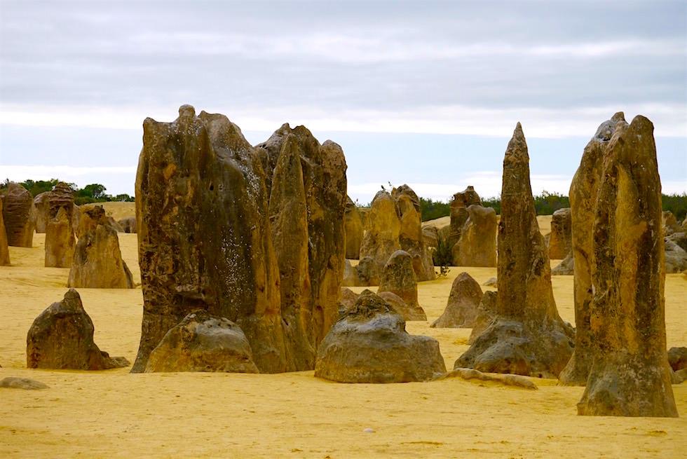 Kalksteinsäulen am Eingang - Nambung National Park - Western Australia