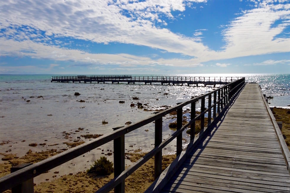 Boardwalk zum Hamelin Pool - Shark Bay - Western Australia