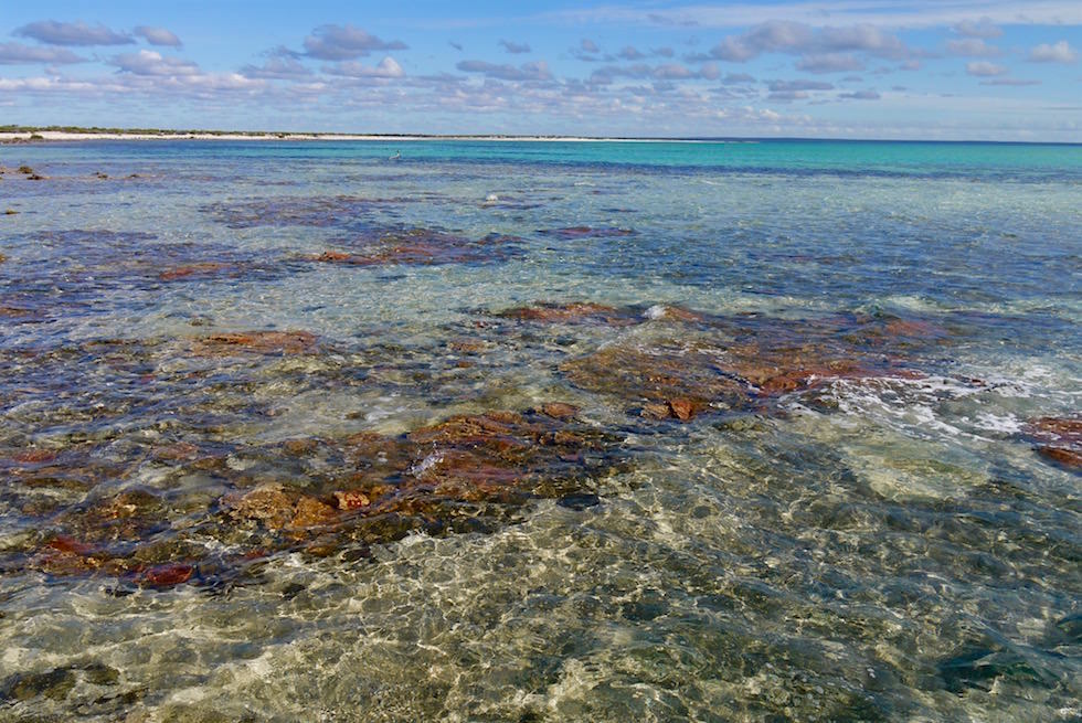 Bucht bei Hamelin Pool - Shark Bay - Western Australia