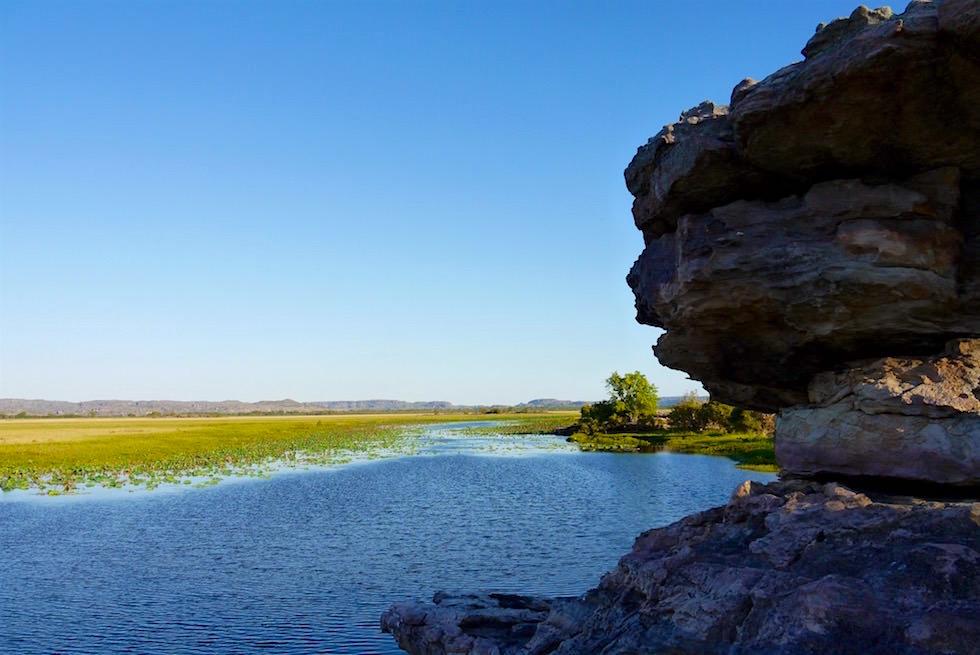 Blick über Billabong - Arnhem Land - Northern Territory