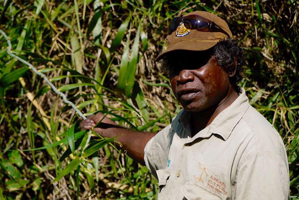 Aboriginal Pflanzenkunde - Guluyambi Cruise auf dem East Alligator River - Northern Territory