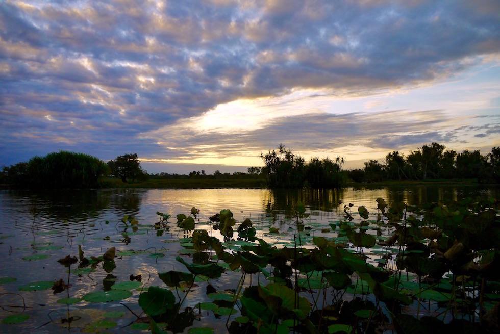 Sonnenuntergangsstimmung - Wetland Cruises - Cooroboree - Northern Territory