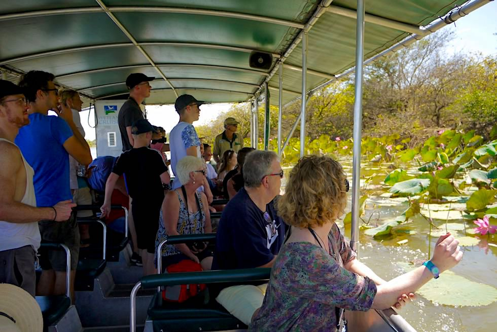 Boot - Corroboree Wetland Cruises - Northern Territory