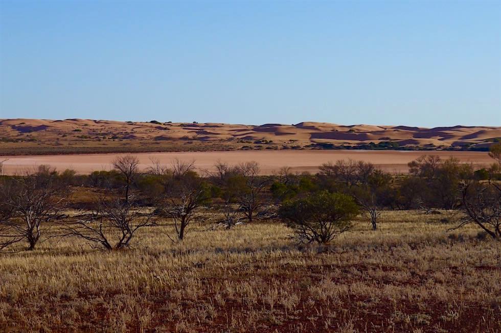 Roter Salzsee - Lake Harris - South Australia