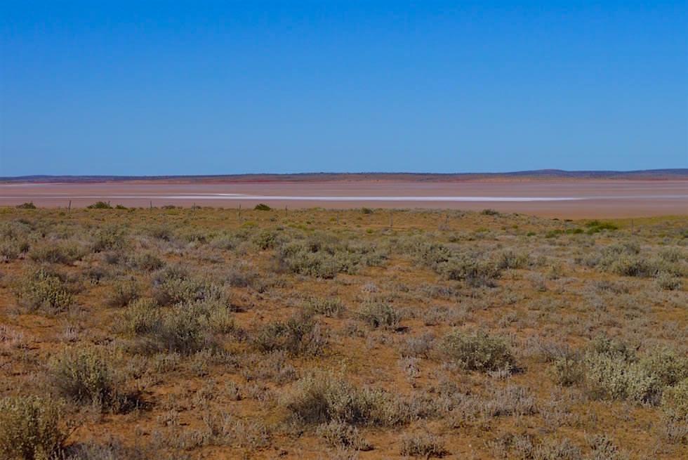 Blick auf Lake Everard im Lake Gairdner National Park - South Australia