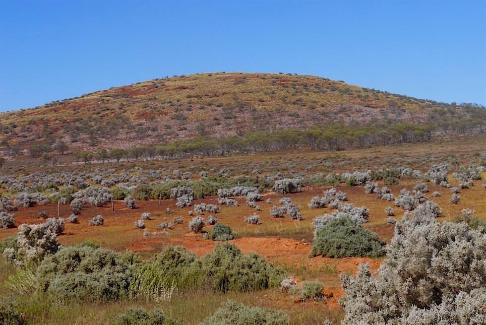 Hügel - Lake Gairdner National Park - South Australia