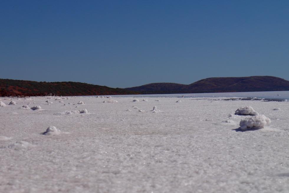 Spaziergang auf dem Lake Gairdner & Grawler Ranges - South Australia