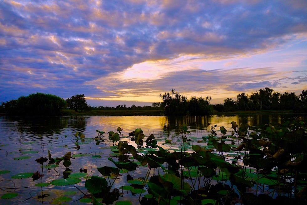 Sonnenuntergang - Corroboree Sunset Wetland Cruises - Northern Territory