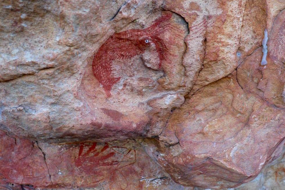 Wandmalerei Arnhemland - Kakadu Cultural Tours - Northern Territory