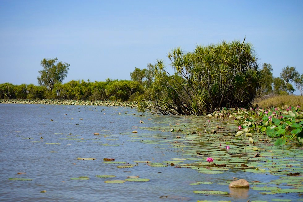 Wasserwege - Corroboree Wetland Cruises - Northern Territory