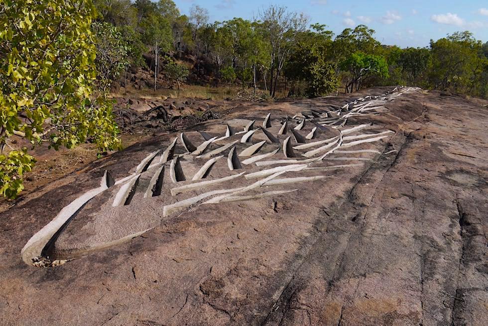 Wilder Reis - Riesige in Stein geschlagene Skulptur des japanischen Künstlers Tanabe - Corroboree - Northern Territory