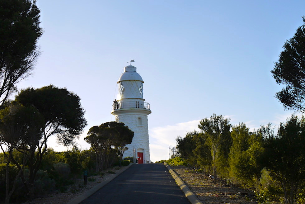 Anhöhe - Cap Naturaliste Lighthouse - Western Australia