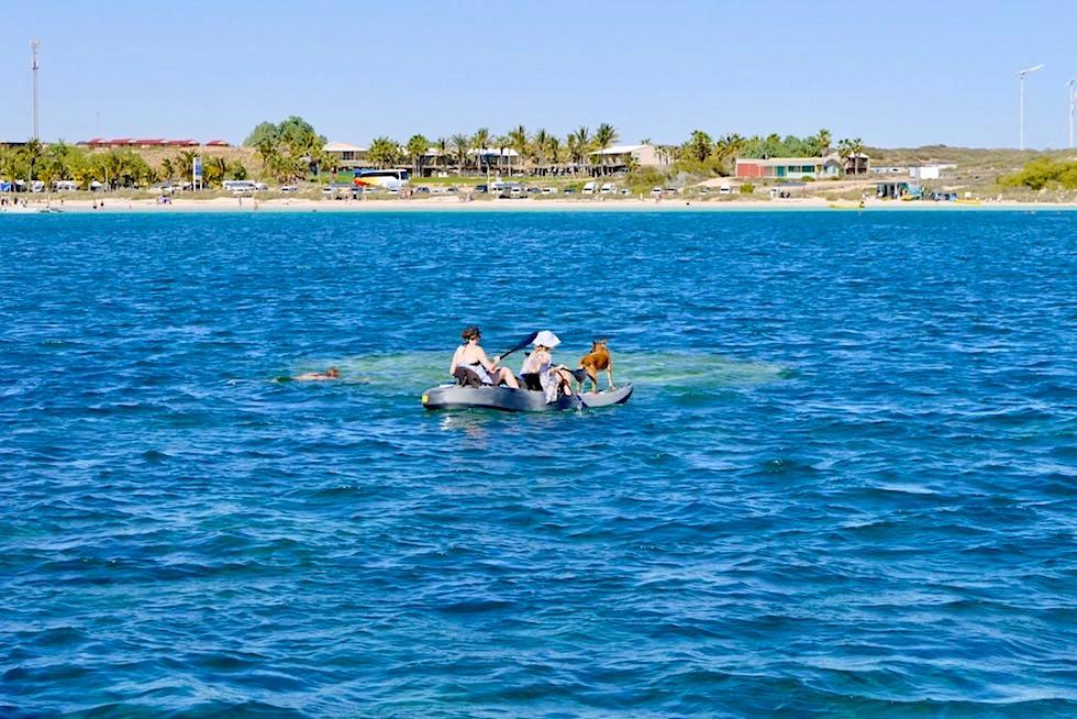 Ayers Rock ein riesiger Korallenblock im Ningaloo Reef - Bills Bay bei Coral Bay - Western Australia