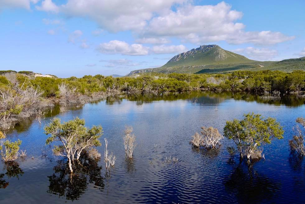 Blick über Culham Inlet zum Mount Barren - Fitzgerald River - Western Australia