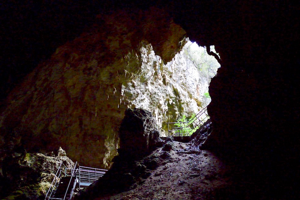 Blick nach draussen - Mammoth Cave an der Margaret River Caves Road - Western Australia