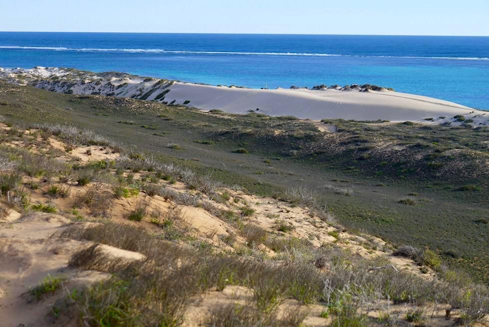 Coral Bay Quad Trek - Ausblick auf Sanddüne & Ningaloo Riff - Western Australia