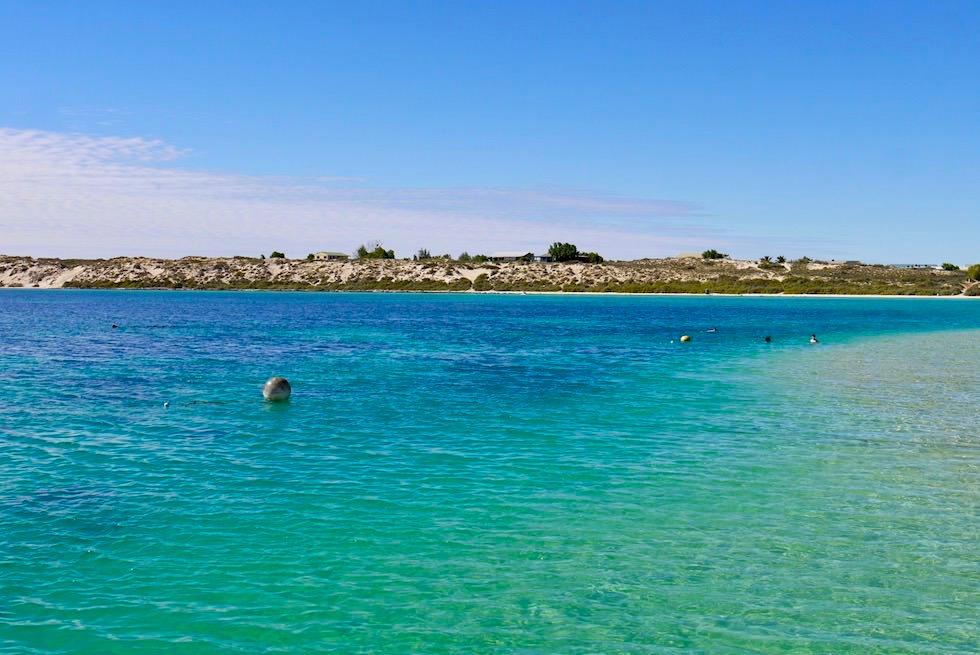 Coral Bay - Schnorcheln direkt vom Strand am Ningaloo Reef - Western Australia
