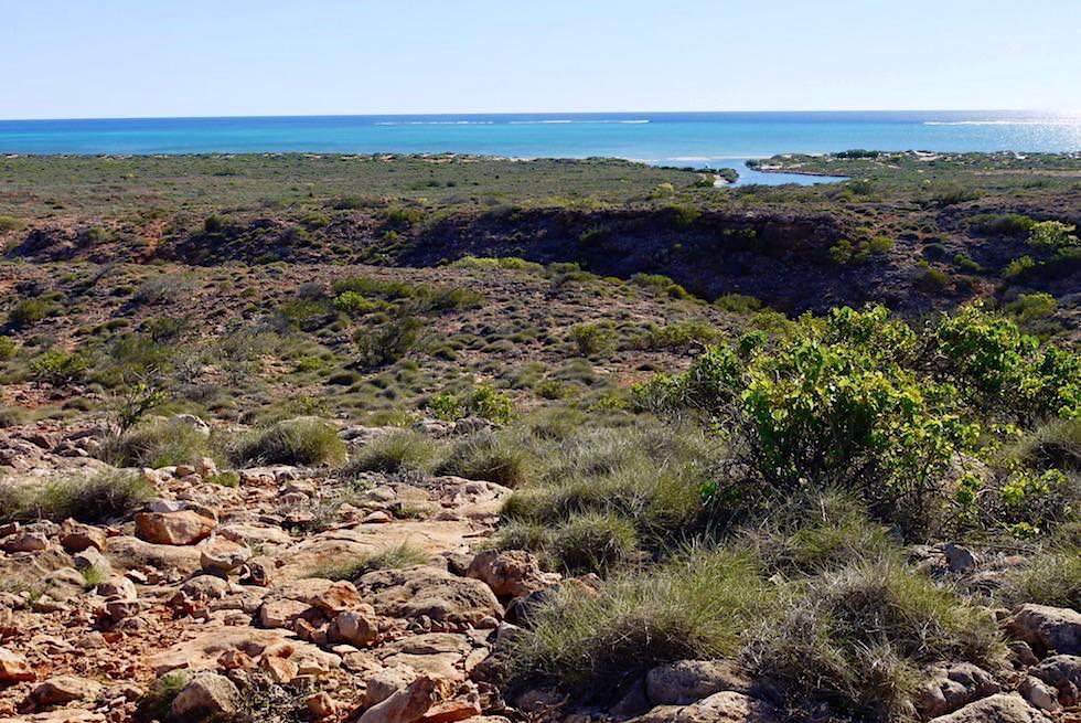 Rückweg auf dem Dach der Yardie Gorge - Yardie Gorge Walk - Western Australia