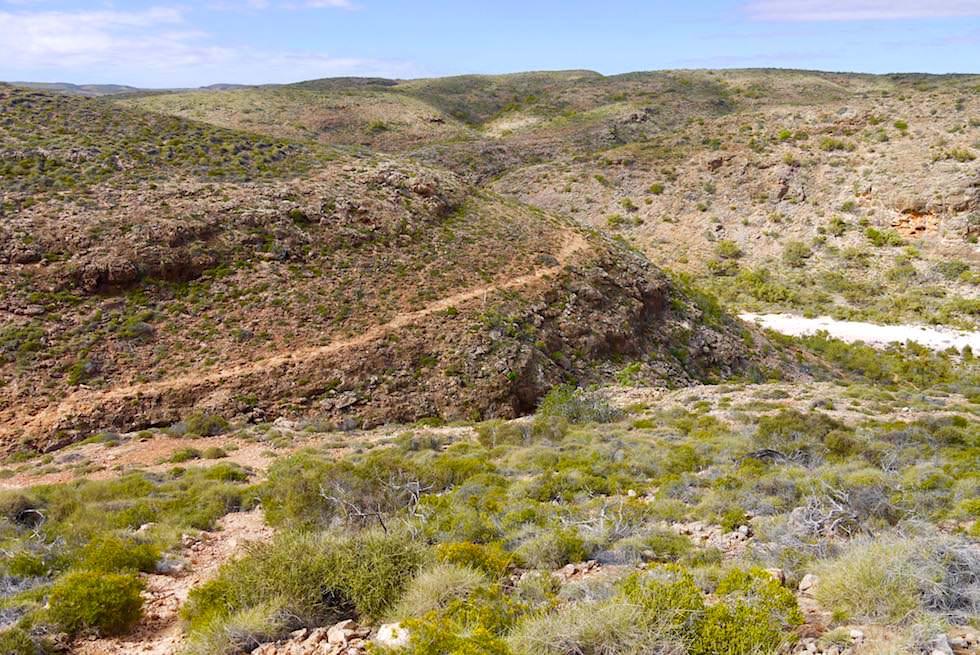 Wandern entlang dem Canyon - Mandu Mandu Schlucht - Cape Range National Park - Western Australia