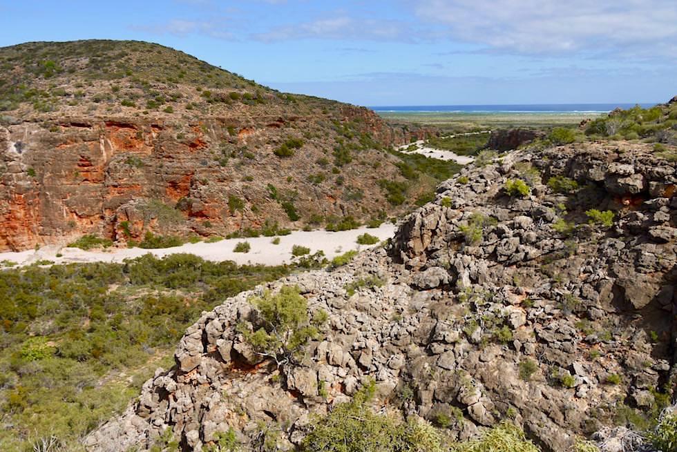 Fast oben auf dem Dach des Canyons - Mandu Mandu Gorge im Cape Range National Park - Exmouth - Western Australia