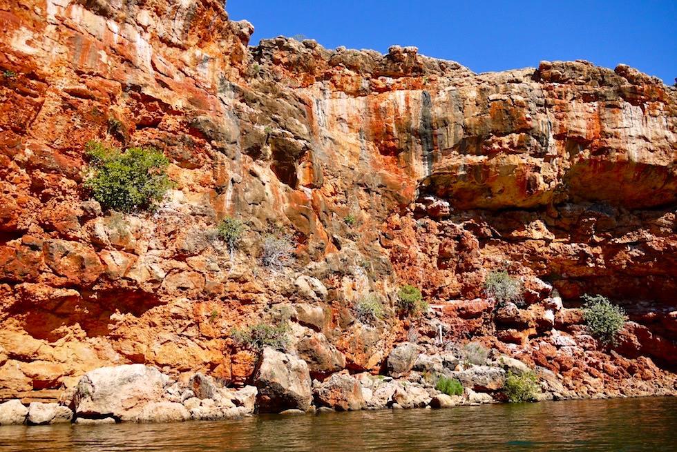 Strahlend rote Felswand der Yardie Gorge & Yardi Creek - Cape Range National Park - Exmouth - Western Australia