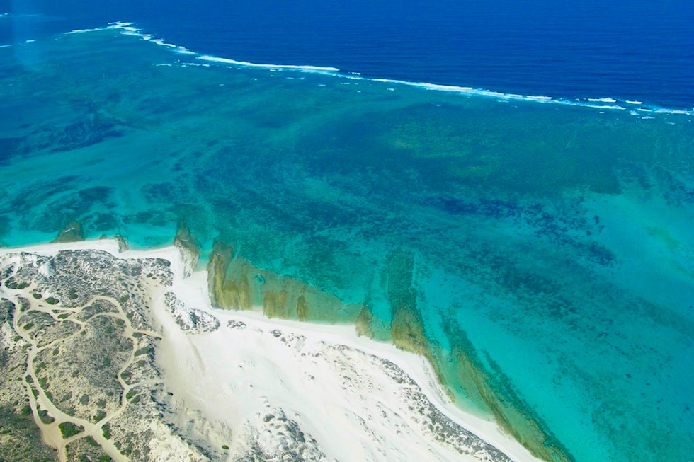 Five Fingers Reef - Coral Bay - Western Australia