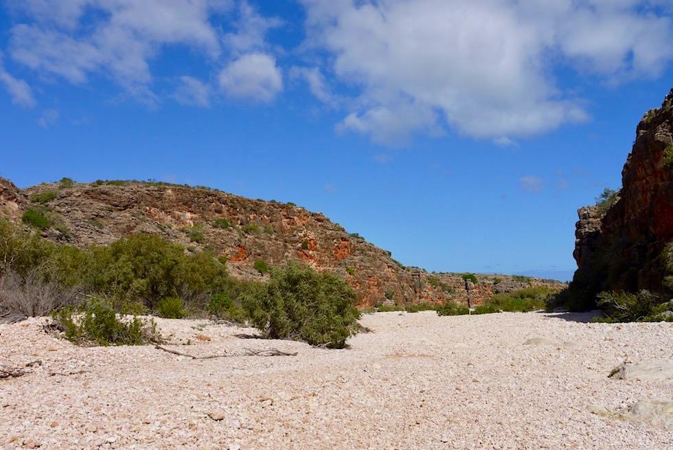 Wandern in dem Flussbett der Mandu Mandu Schlucht - Cape Range National Park - Exmouth - Western Australia