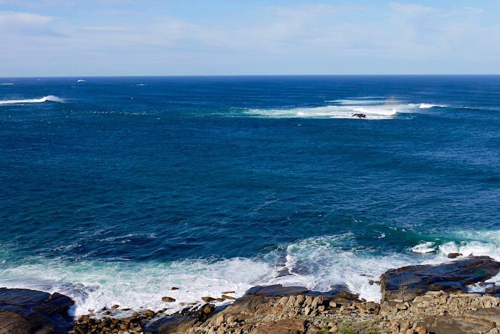 Heimtückische Gewässer - Blick vom Cape Leeuwin Leuchtturm bei Augusta - Western Australia