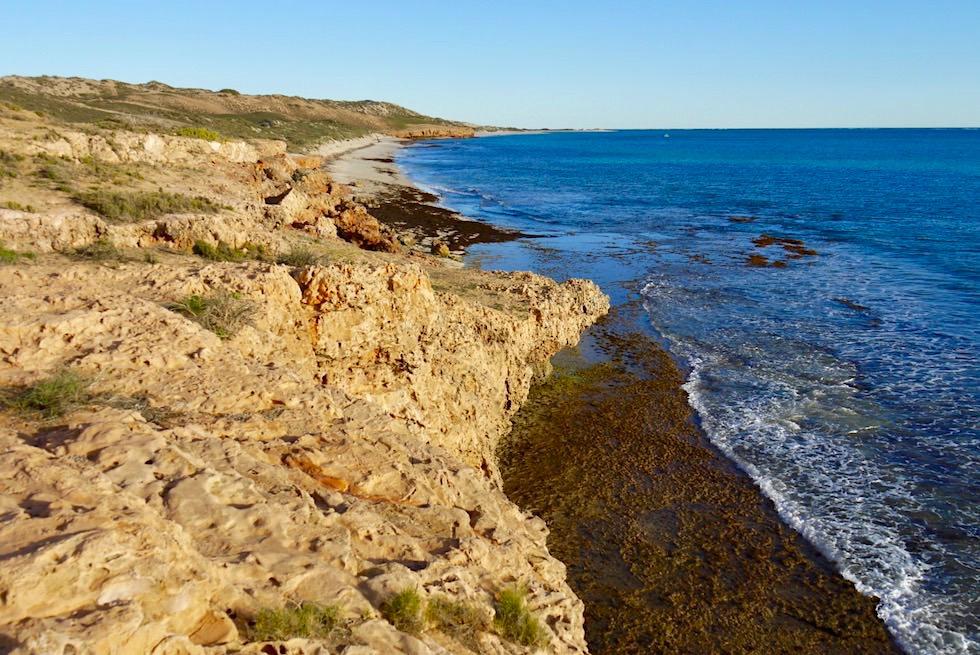 Blick auf den Küstenabschnitt Richtung Süden - Coral Bay & Ningaloo Reef - Quad Tour - Western Australia