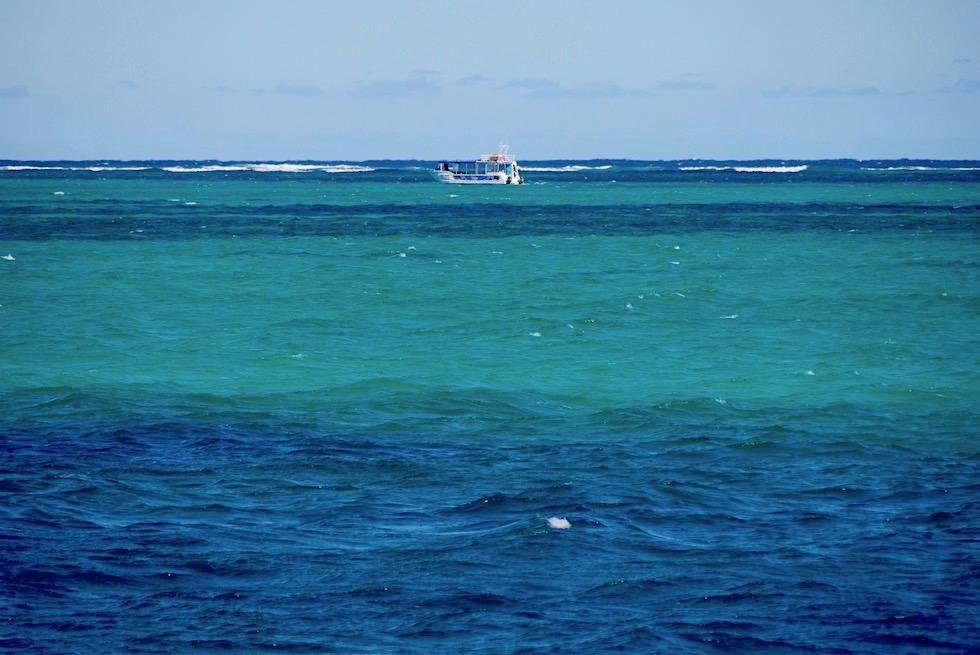 Ningaloo Reef - Mit Mantas Schnorcheln - Western Australia