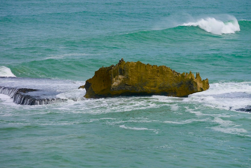 Rhino Rock Felsformation - Cape Northumberland & Limestone Coast - South Australia
