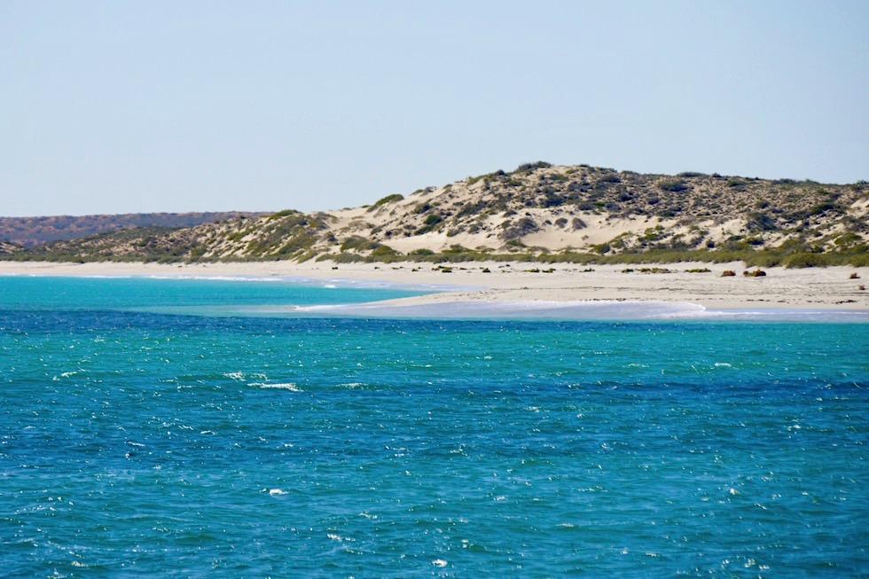 Das größte Saumriff in Australian ist das Ningaloo Reef - Western Australia